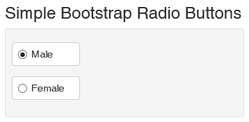Paul Sheriff's Blog for the Real World - A Simple Bootstrap Radio ...